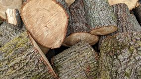 Big logs in bulk. Large logs in bulk can be used as background or wallpaper and for other possibility or to modify to your taste royalty free stock image