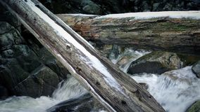 Large Logs Over River In Snowy Wilderness stock footage