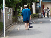 A Large Man and Tiny Dog. A large, tall man and a tiny, small dog go for a walk in Japan Royalty Free Stock Photography