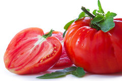 Large mature ox heart tomatoes. Stock Photos