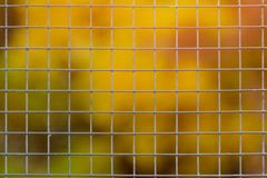 Large metal mesh. Blurred background.  Royalty Free Stock Photography