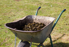 Large Metal Wheelbarrow filled with manure Royalty Free Stock Photography