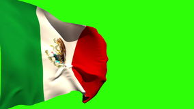 Large mexico national flag blowing stock video