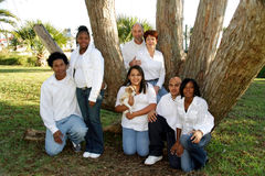 Large mixed race family. Group portrait outside at a park Royalty Free Stock Photos