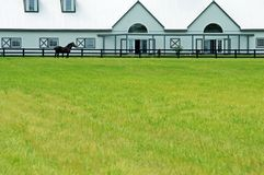 Large modern barn with a horse Stock Images
