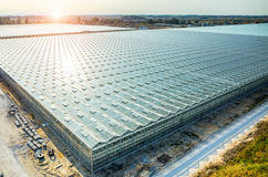 Large modern greenhouse Royalty Free Stock Photography