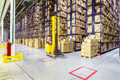Large modern warehouse with forklifts. Fork lift operator preparing products for shipment Royalty Free Stock Photography