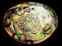 Large natural abalone Shell on a wooden table. Large bright colourful shiny natural abalone Shell Royalty Free Stock Photos