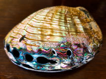 Large mother of pearl Shell on a wooden table. Large bright colourful shiny mother of pearl Shell Royalty Free Stock Photography