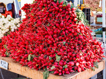 Large Mound of Radishes for Sale Stock Photos