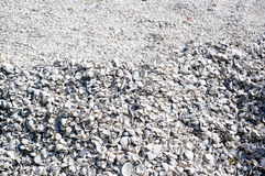 Large mound of sea shells background Stock Photography