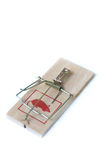 Large Mouse Trap Royalty Free Stock Photos