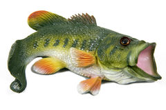Large Mouth Bass. A plastic model of a large mouth bass fish isolated on white Stock Photography
