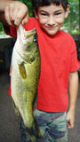 Large Mouth Bass Fish. A young boy showing off a large mouth bass fish that he caught in the summer Royalty Free Stock Photography