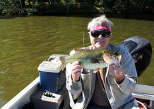 Large mouth bass Royalty Free Stock Photos
