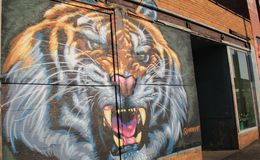 Large mural with face of angry lion, Rochester, New York, 2017. Bright red brick walls with painting of large angry lion on exterior, showcasing craftsmanship of Royalty Free Stock Photos