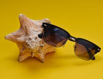 A large muslin shell and sunglasses on a yellow background. The concept of relaxing on the beach.  Royalty Free Stock Image