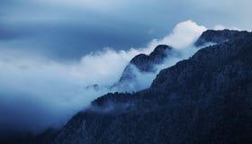 Mountain between fog stock photos