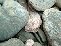 Backdrop large natural pebble of various colors close-up. Stock Image