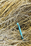 Large needle in a haystack. A conceptual image of a large needle in a haystack Royalty Free Stock Photography