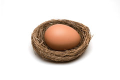 Large Nestegg Stock Photo