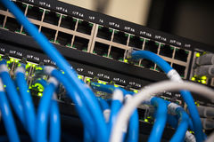 Large network hub and blue cables Stock Images