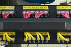 Large network hub connected Internet with LAN cables Royalty Free Stock Photography