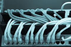 Large network hub connected Internet with LAN cables Royalty Free Stock Images