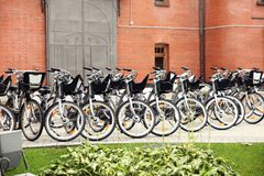 Large number of bicycles in the Parking lot in the city Stock Photography