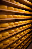 Large number of cheese-wheels aging. On shelves at the cellar of the cheesemaker shop Stock Image
