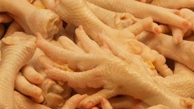 Large number of chicken giblets, entrails, wings, legs, stomachs, livers, hearts and other parts of the chicken carcass stock footage