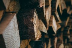 A large quantity of firewood from pine stock photo