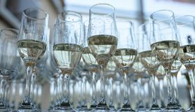 A large number of half full champagne or bubbly flutes. View from below of many glasses half full with a fizzy, champagne like beverage, a typical wedding Royalty Free Stock Images