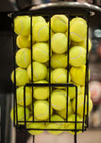 Large number of yellow tennis balls in the basket Royalty Free Stock Images