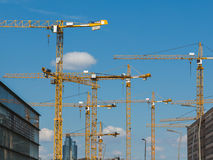 Large numbers of Cranes at a Construction site. Royalty Free Stock Photography