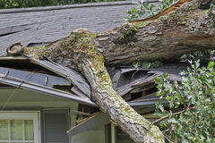 Large Oak Tree Crushes the Roof of a Small House Royalty Free Stock Photography