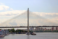 Large Obukhov cable-stayed bridge across the Neva River in St. P Stock Photos