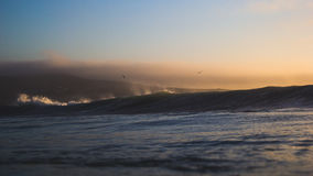 Large ocean waves at sunset Stock Image