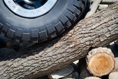 Large offroad tire on tree trunk Stock Photo