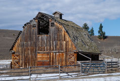 Large OLd Barn with Beautiful Colorful Woodgrain Royalty Free Stock Image