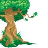 Large old tree stock illustration
