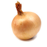 Large onion Stock Images