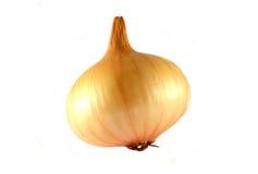 Large onion head Stock Photo