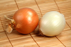 Large onions Royalty Free Stock Image