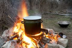 Cooking on a fire. A large open pan of food being cooked on a fire in the forest Royalty Free Stock Photography