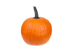 Large Orange Pumpkin Royalty Free Stock Photo