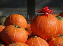 Large Orange Pumpkins Royalty Free Stock Photography