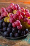 Large organic table grape Globe in assortment served on the tin Stock Photo