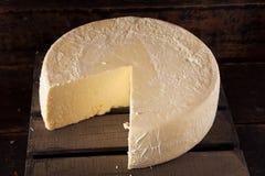 Large Organic White Cheese Wheel Stock Image