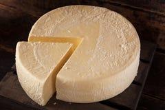 Large Organic White Cheese Wheel Stock Photography